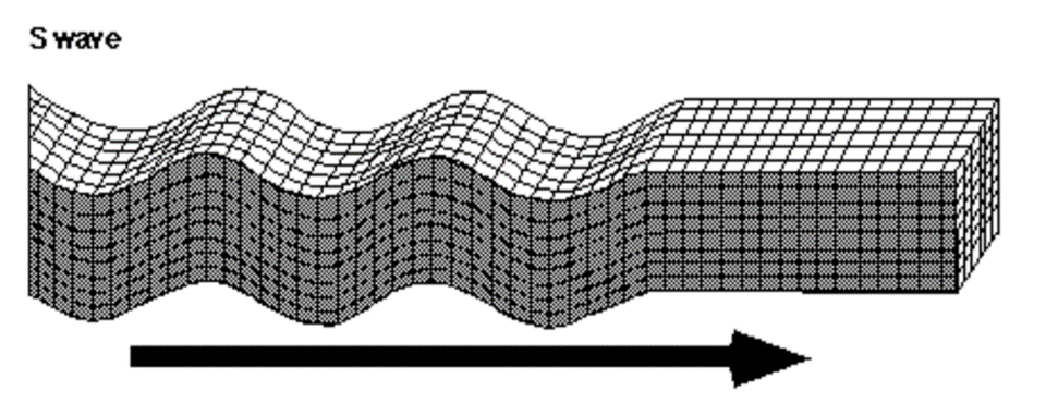 Figure 2. Model of S-Wave