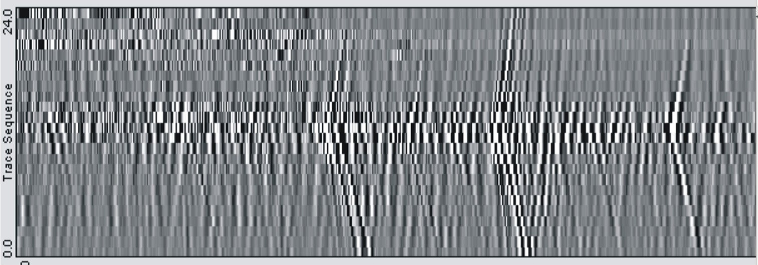 Figure 8. Example of Trace Sequence, x-t domain. Traces of 24 geophones in the time window of 30 seconds